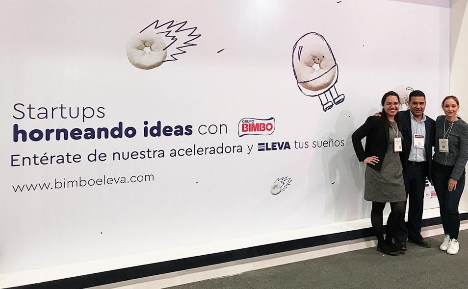 Eleva_Bimbo